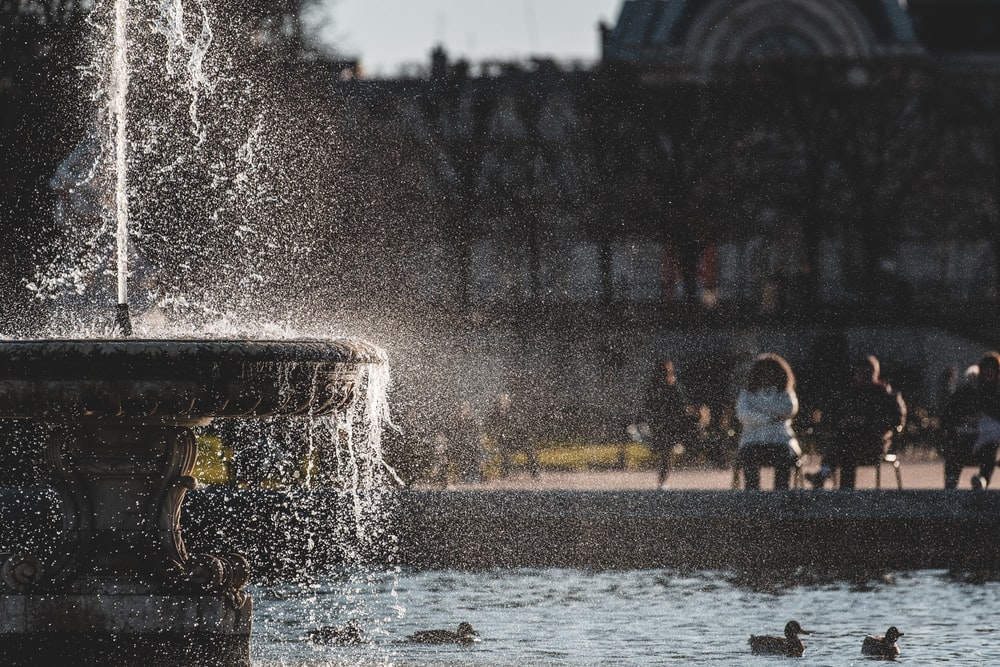 water fountain in the middle of the park