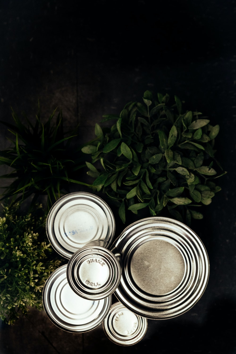 green leaves and silver round cans