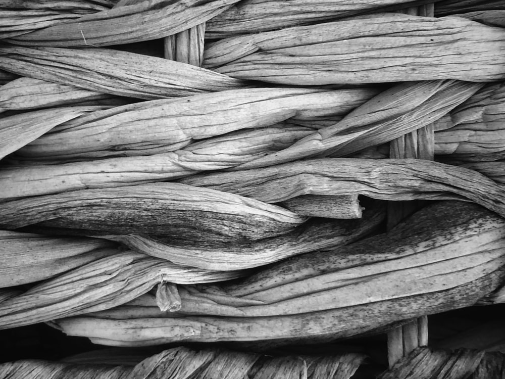 grayscale photo of a wood