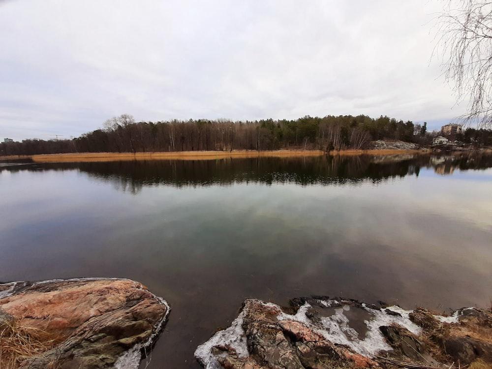 lake near trees under white sky during daytime