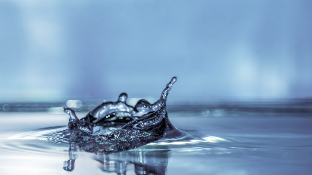 water drop in close up photography