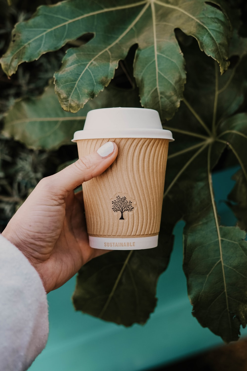 person holding white and brown coffee cup