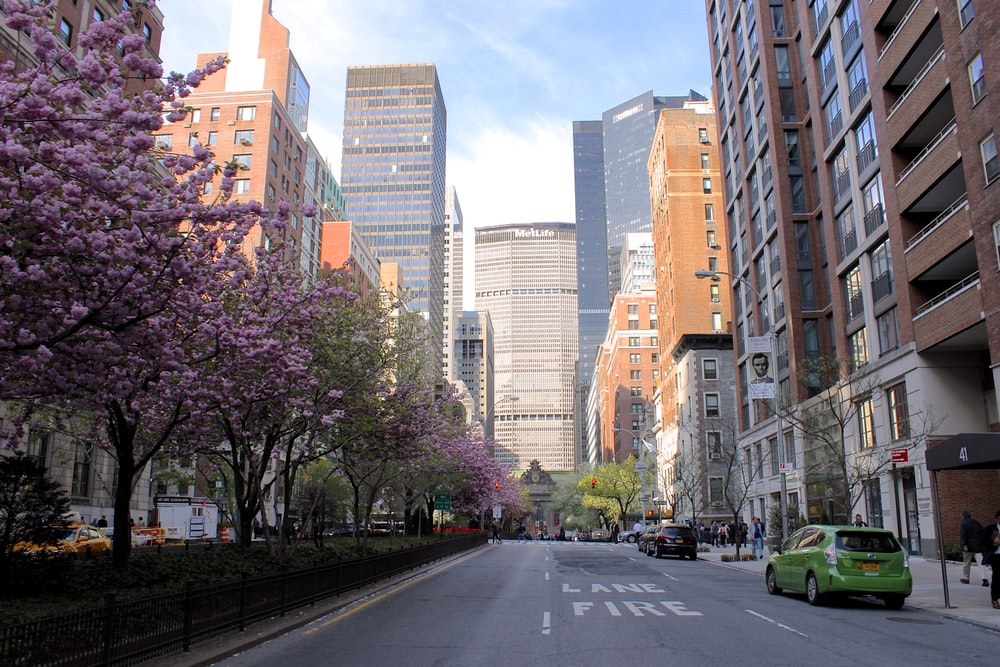 cars on road between high rise buildings during daytime