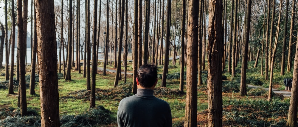 man in gray crew neck shirt standing in the woods during daytime