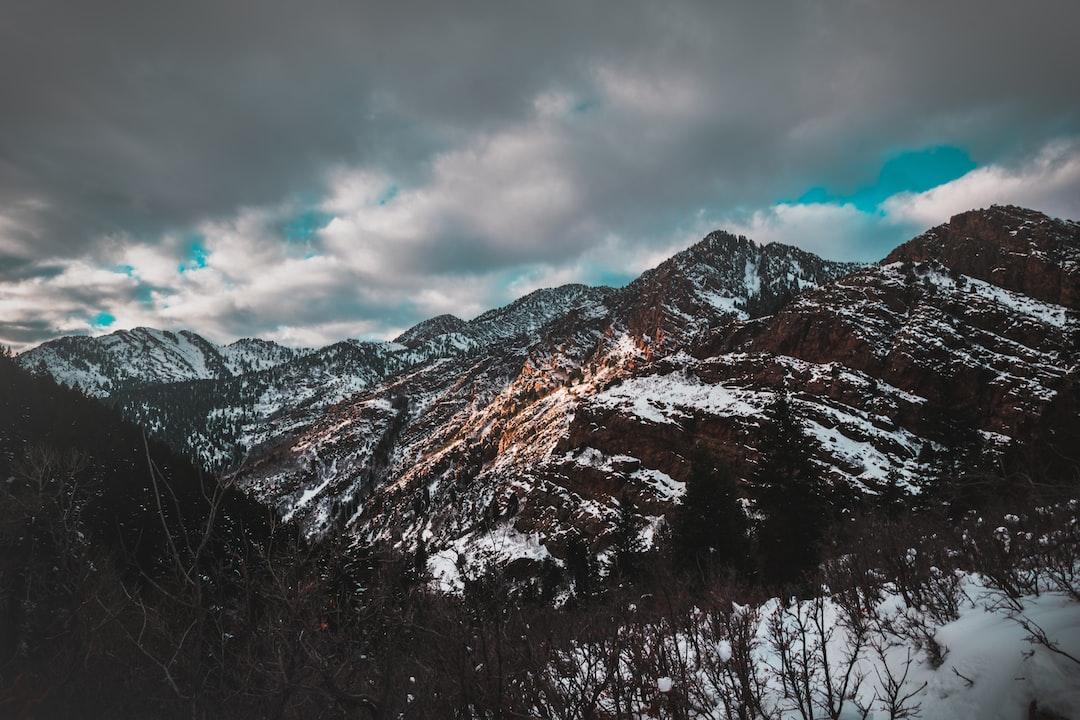 Lake Blanche Trail 1•04•20 OO