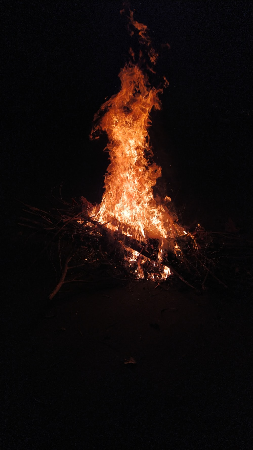fire in the middle of the woods