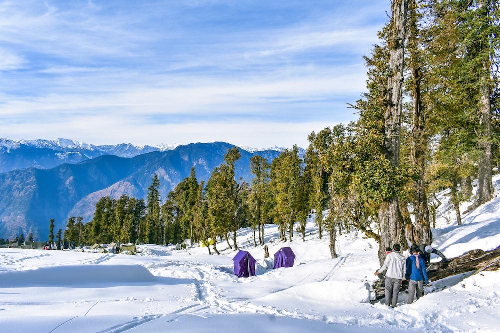 people sitting on snow covered ground near green trees during daytime Kedarkantha Trek Guide - Summit Trek  In Uttarakhand