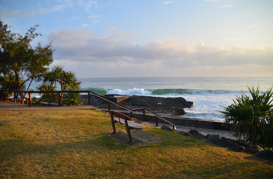 Surf and seat