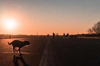 Sunset at old runway !