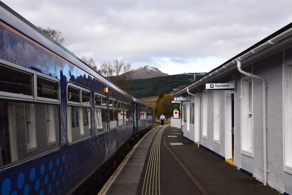blue and white train on rail road during daytime