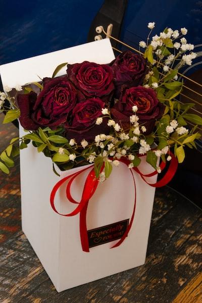 red roses in white ceramic vase
