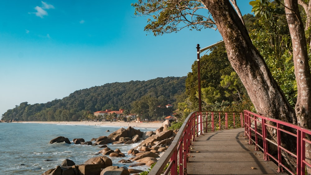 brown wooden bridge over the sea during daytime