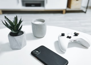 white xbox one controller beside green plant