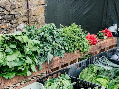 Kalorietabel for grønstager: Tabel med kalorier i grøntsager 🥦