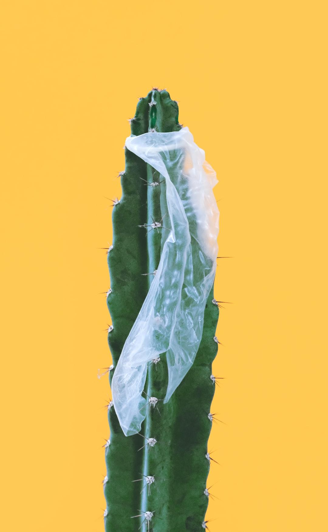 Sex Education: Can a condom break?