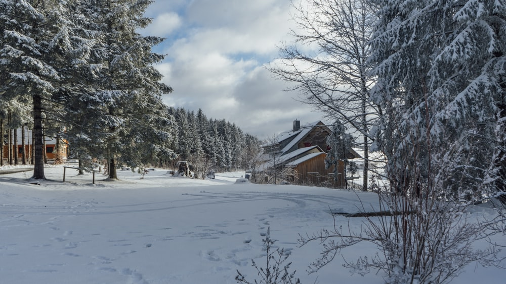 brown wooden house on snow covered ground near trees under white clouds and blue sky during