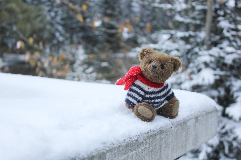brown bear plush toy on snow covered ground during daytime