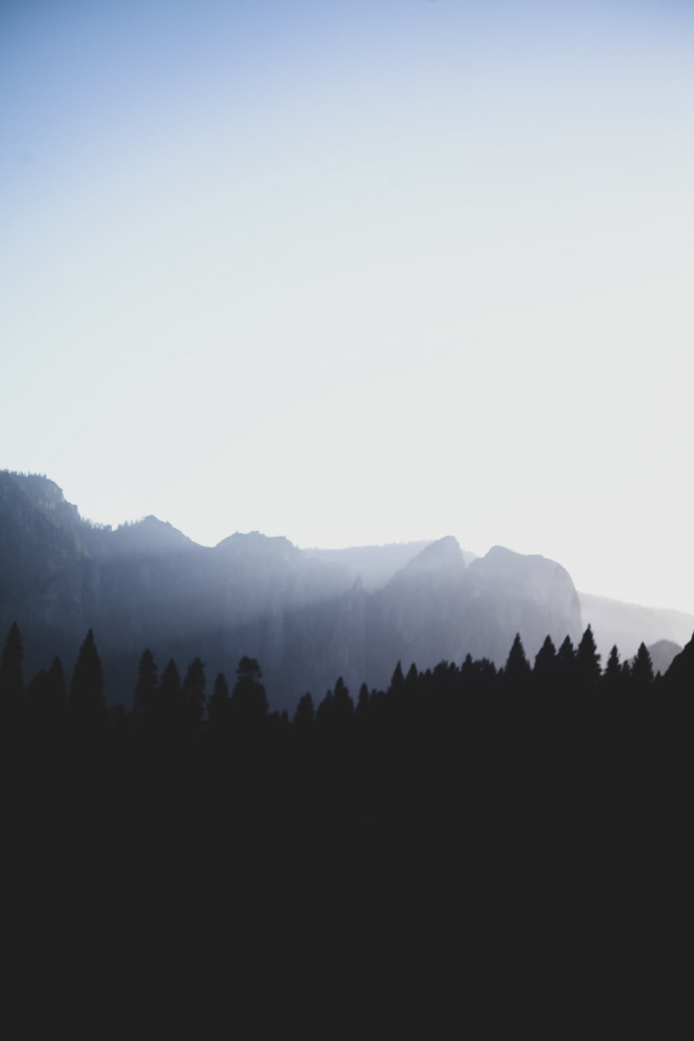 silhouette of trees on mountain during daytime