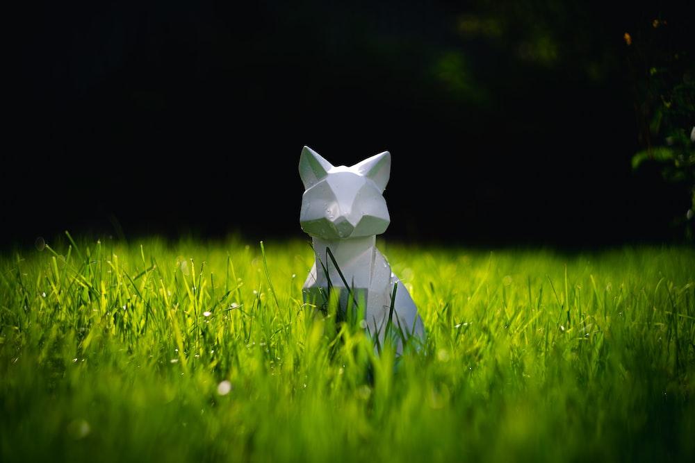 white cat figurine on green grass field