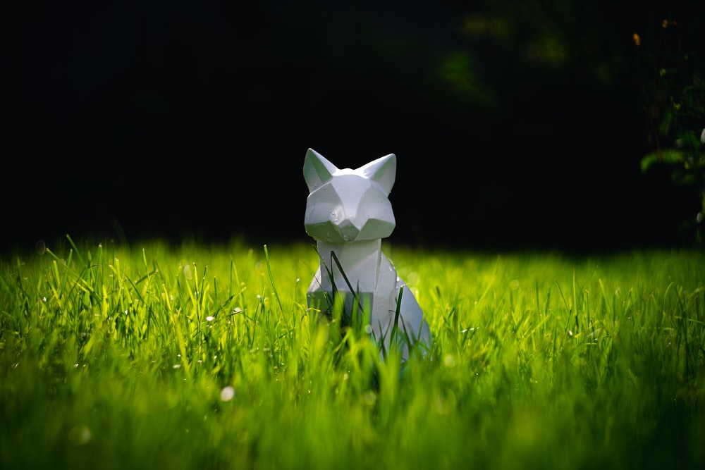 white cat figurine on green grass field