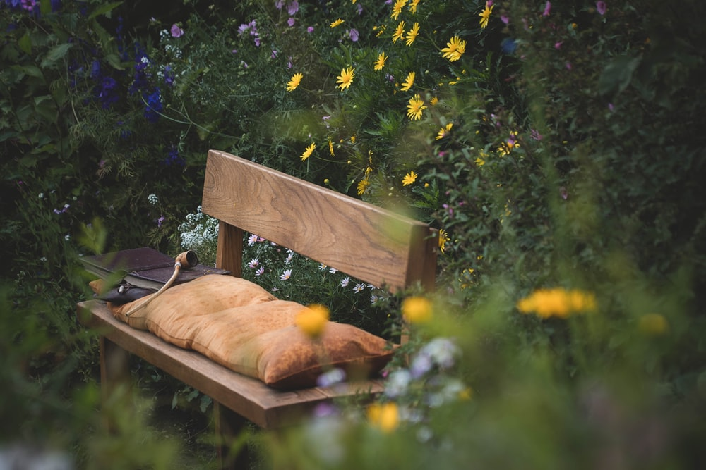 brown wooden bench with orange tabby cat on top