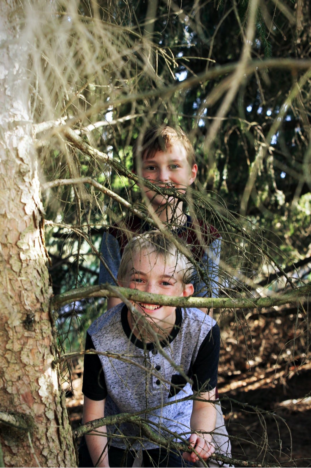 two brothers hide in the woods.