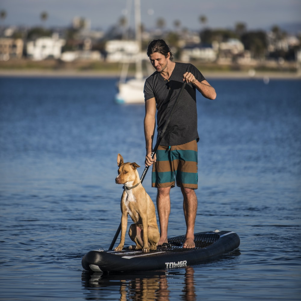 man in blue tank top and blue shorts holding brown short coated dog on black and