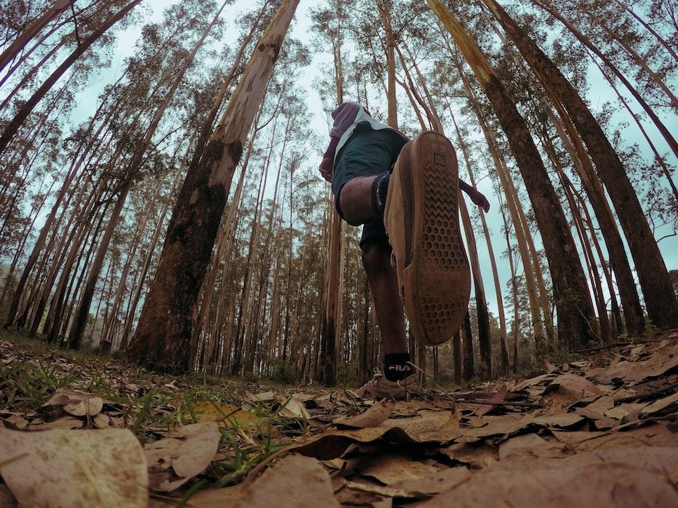 Hiking inside the national park
