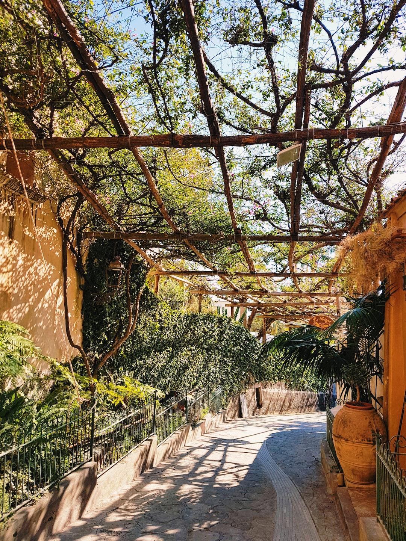 Beautiful Street in Positano, Amalfi Coast. For more visual travel inspiration visit our instagram: https://www.instagram.com/reiseuhu/