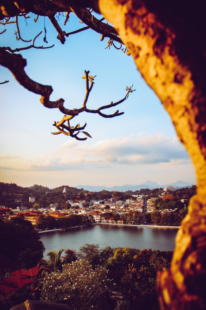 How to plan a day trip to Kandy