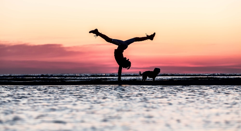 silhouette of man riding skateboard during sunset