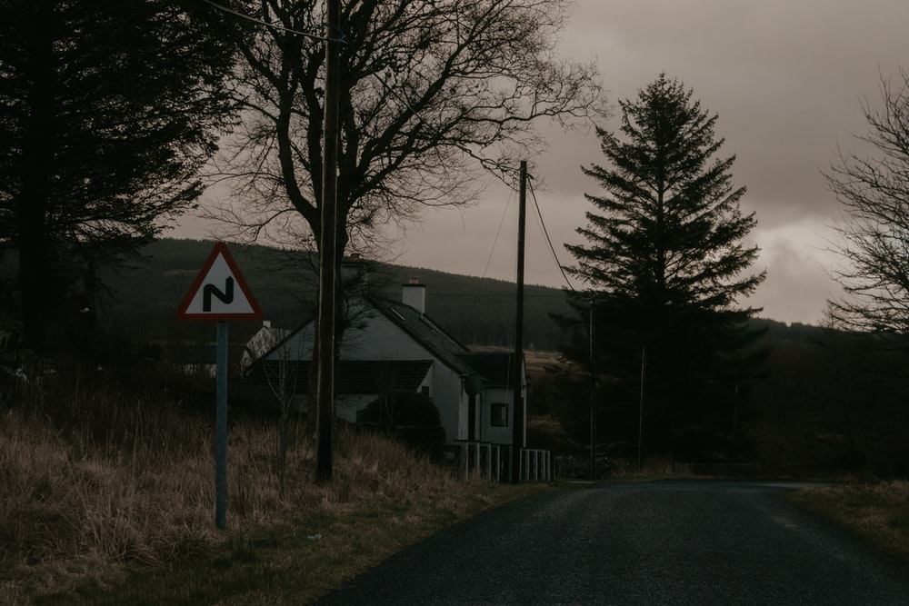 gray concrete road near trees and houses during daytime