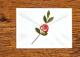 red rose on white envelope