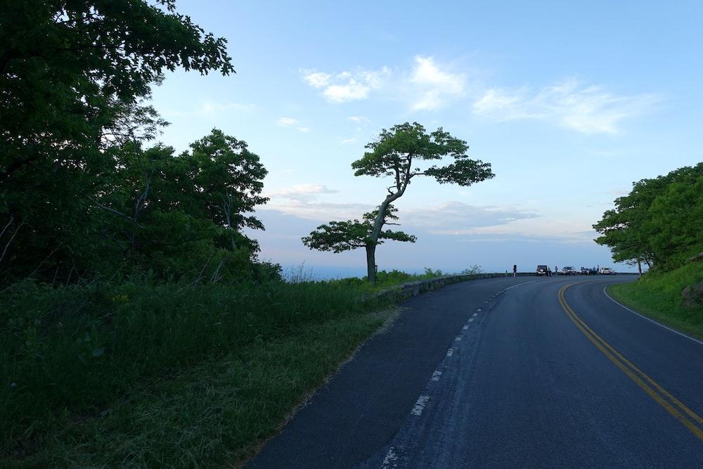 gray asphalt road between green grass field during daytime