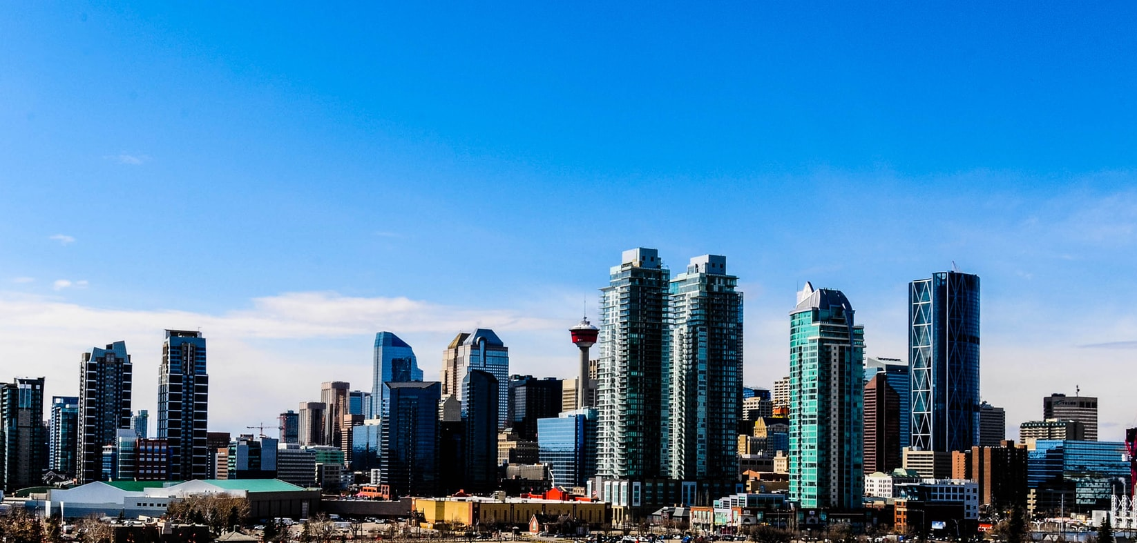 Calgary Web Design   WordPress Experts
