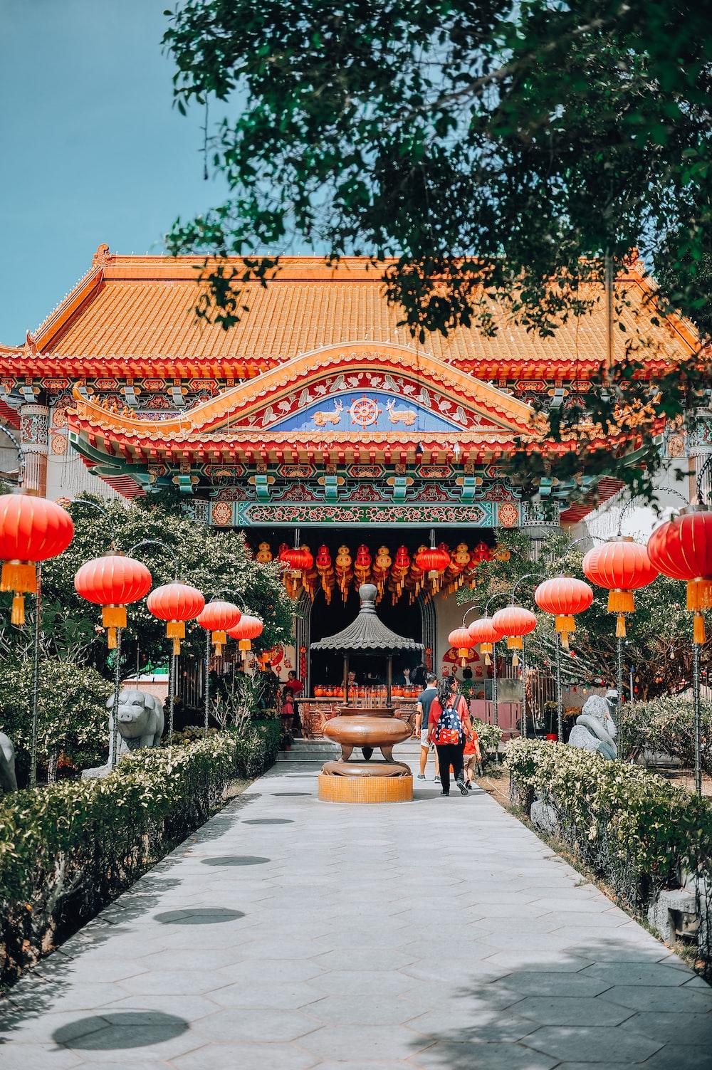 red chinese lanterns on green trees during daytime