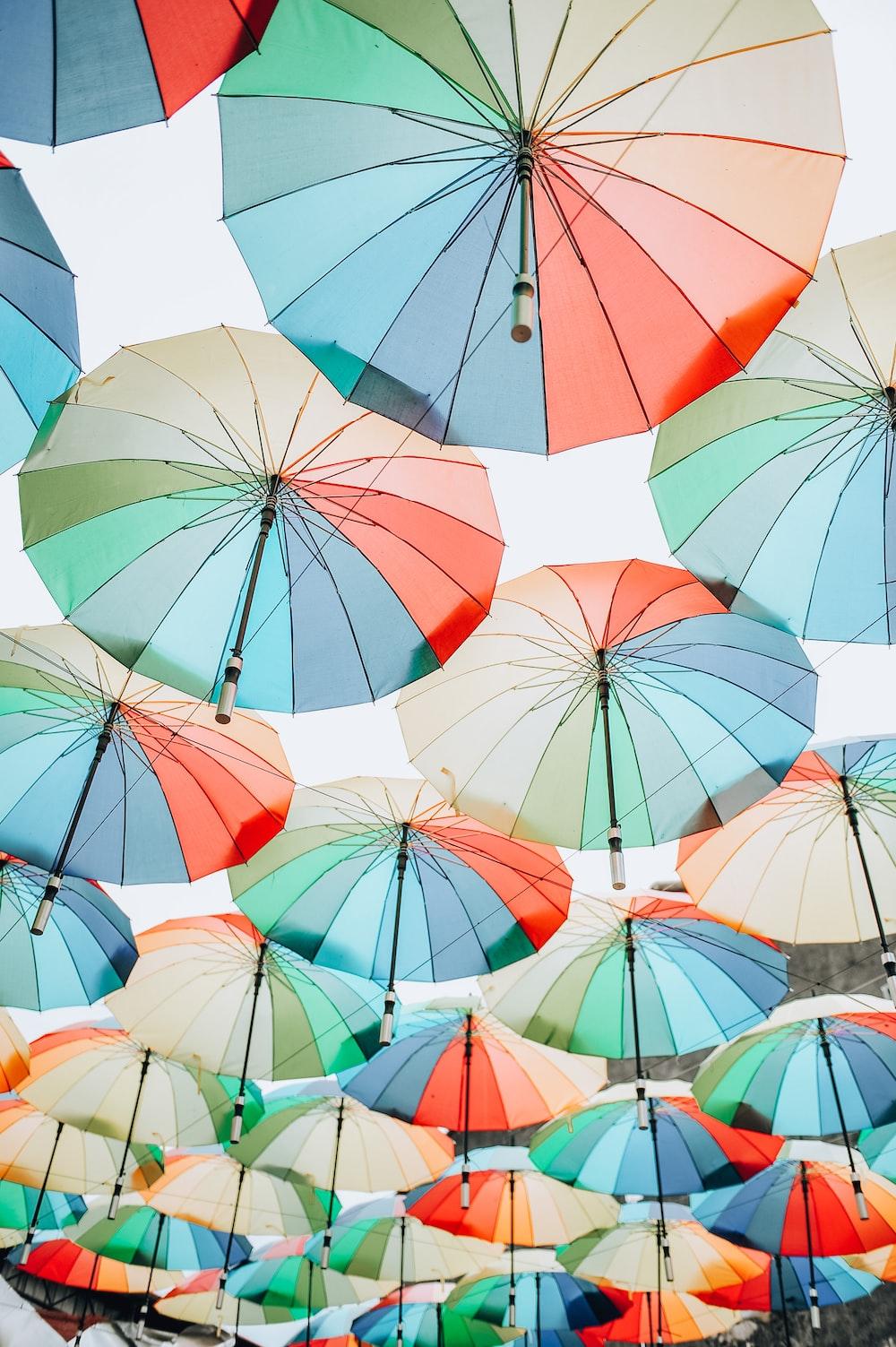pink umbrellas hanging on white string during daytime