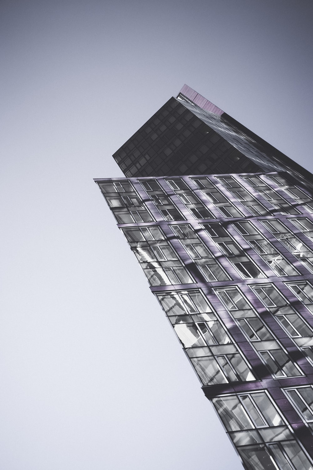 purple and white high rise building