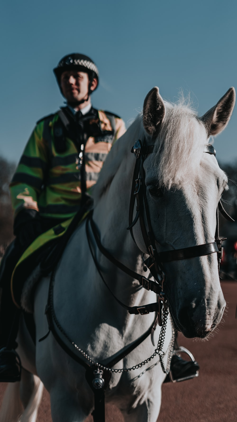 man in green and black striped long sleeve shirt riding white horse during daytime