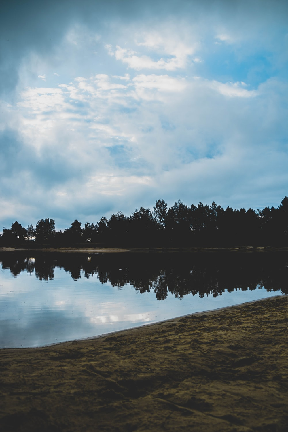 body of water near trees under cloudy sky during daytime