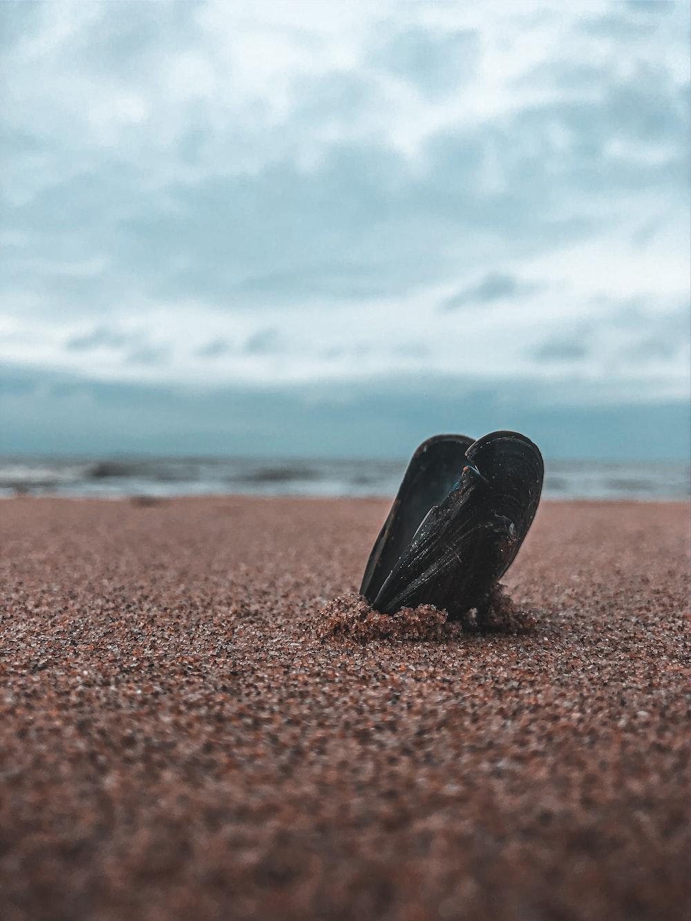 black rock on brown sand during daytime