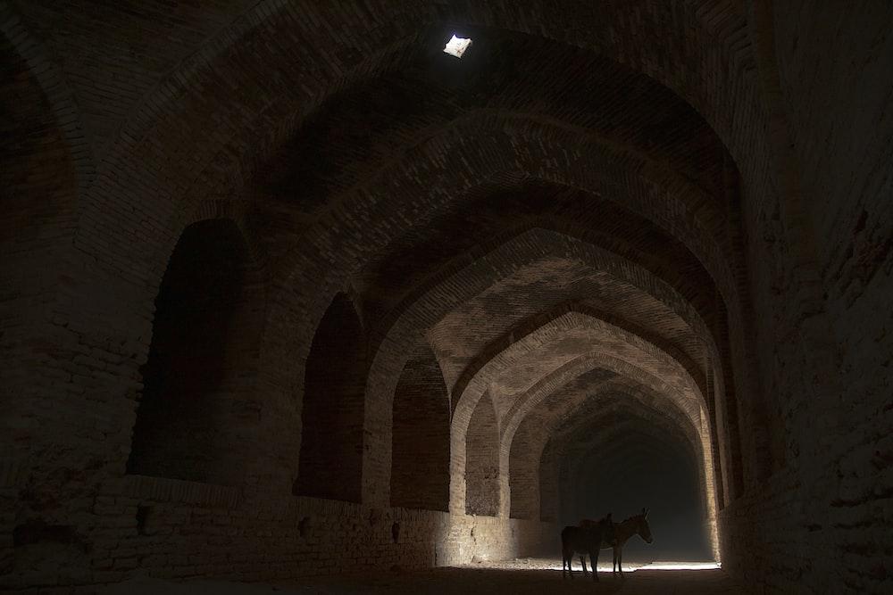 2 person walking inside tunnel