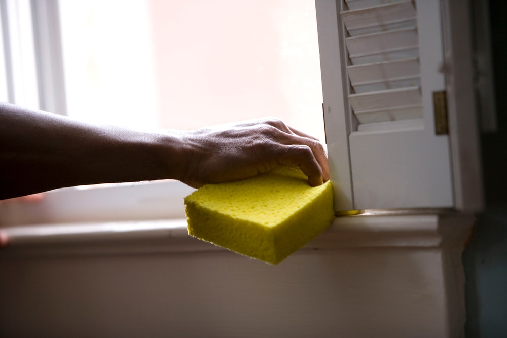 person holding yellow sponge on white surface