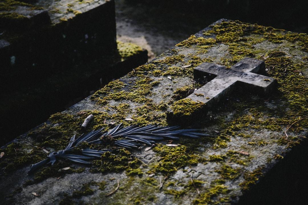 Grave in Père Lachaise Cemetery, paris, france