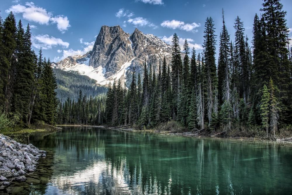 Tỉnh bang Canada BC