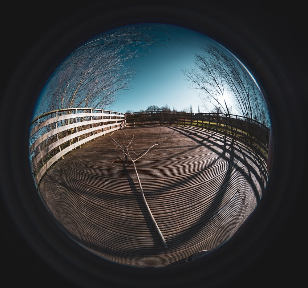 brown wooden fence under blue sky during daytime