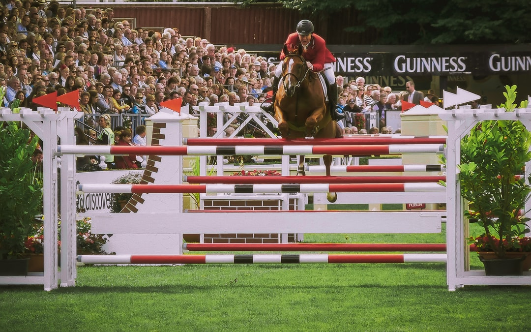 American (?) horse and rider in the Nation's Cup in 2010 jumping event in the Royal Dublin Society Main Arena.