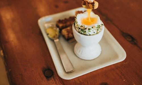 incubate eggs facts
