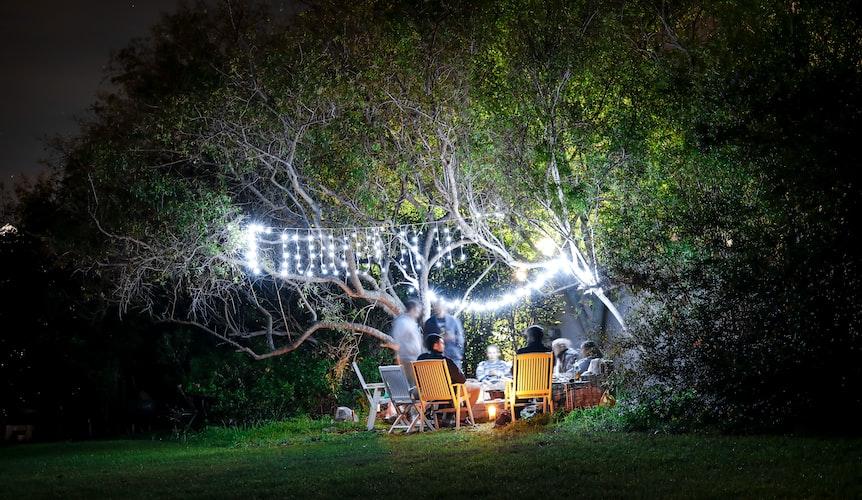 Cheap backyard landscape ideas