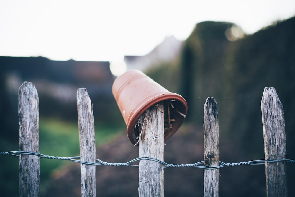 brown wooden fence with white plastic bucket